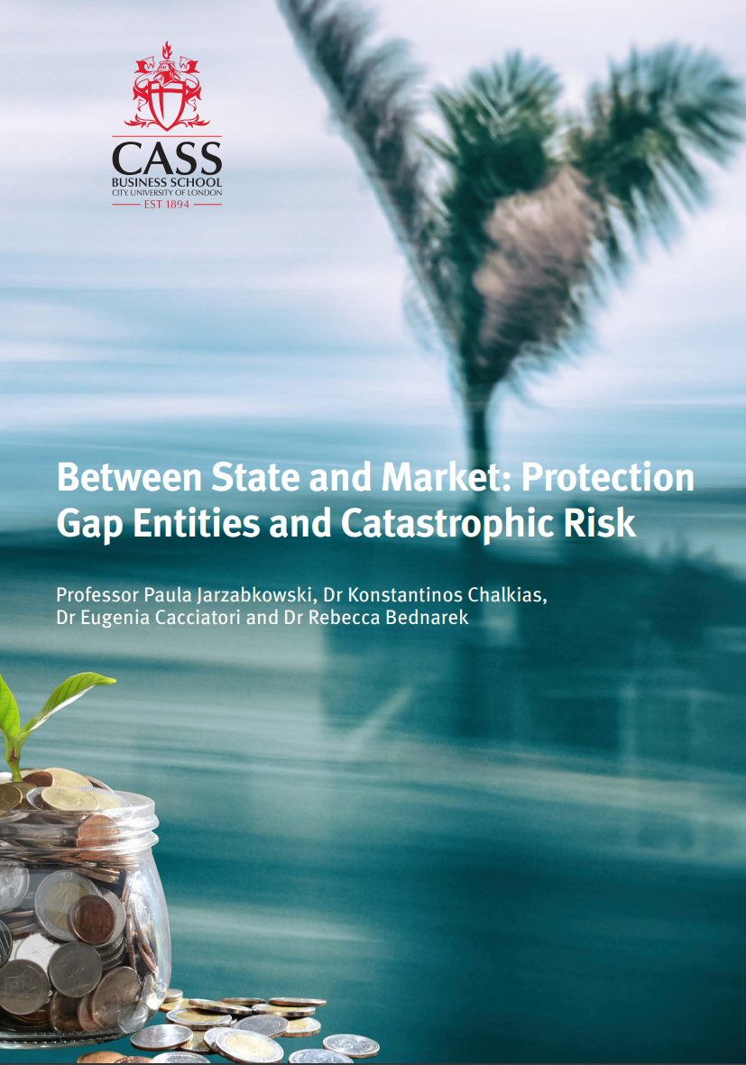 Between State and Market: Protection Gap Entities and Catastrophic Risk
